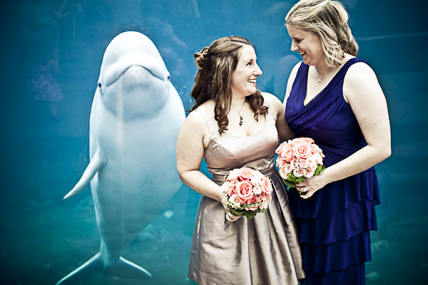Amy + Stacy | Wedding | Mystic Aquarium