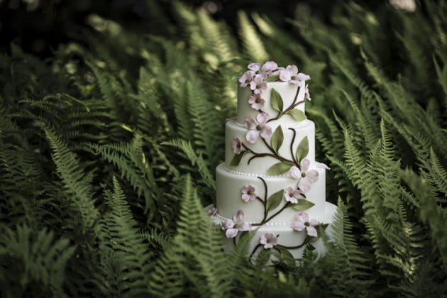 Couture Cakes | Ana Parzych Cakes |  Winvian