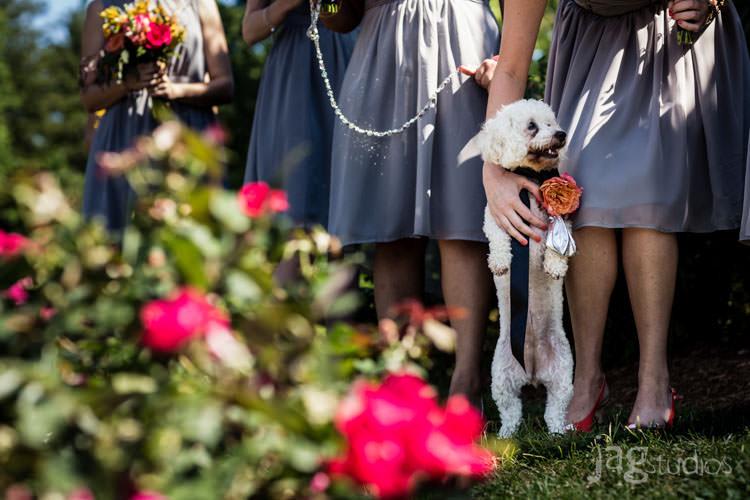 carnival-ferris-wheel-summer-holiday-wedding-jagstudios-photography-010